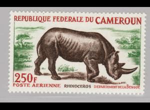 Kamerun: 1964, Nashorn