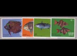 Sri Lanka: 1972, Einheimische Fische