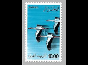 Algerien: 1979, Fliegende Störche
