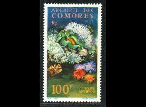 Komoren: 1962, Freimarke Riesenmuschel 100 Fr.