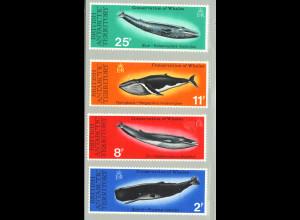 Brit. Antarktisgebiete: 1977, Schutz der Wale
