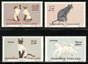 Thailand: 1971, Siamkatzen