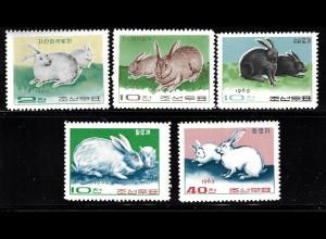 Nordkorea: 1969, Kaninchen