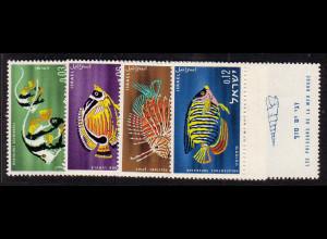 Israel: 1962, Fische des Roten Meeres