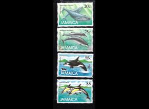 Jamaika: 1988, Wale und Delfine der Karibik
