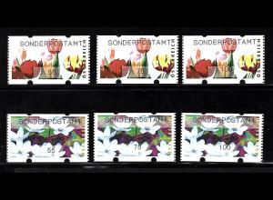 Österreich: 2007, Automatenmarken Blumen Poststandardsatz 55, 75 und 100 C.