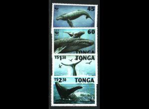Tonga: 1996, Buckelwal (WWF-Ausgabe)