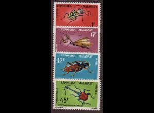 Madagaskar: 1966, Einheimische Insekten