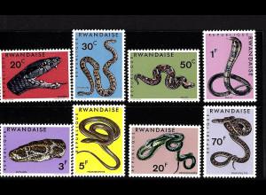 Ruanda: 1967, Schlangen