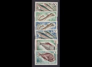 Kongo / Brazzaville: 1961, Tiere der Tiefsee