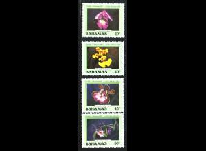 Bahamas: 1987, Orchideen