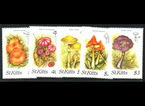 St. Kitts: 1987, Pilze