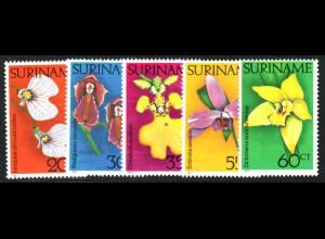 Surinam: 1977, Orchideen