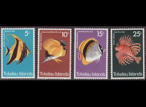 Tokelau-Inseln: 1975, Fische des Korallenriffs