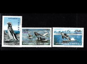 Chile: 2000, Wale und Pinguin